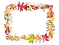 Vase mit trockenen Blättern, Apfel und Kerzen auf dem Rausschmiß Feld gemacht von den Herbstbeeren und -blättern auf weißem Hinte Stockbilder
