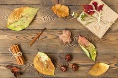 Vase mit trockenen Blättern, Apfel und Kerzen auf dem Rausschmiß Geschenk, Herbstlaub, Zimtstangen und Kastanien auf hölzernem Hi Stockbilder