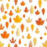 Vase mit trockenen Blättern, Apfel und Kerzen auf dem Rausschmiß Nahtloses Herbstahornblattmuster ENV 10 vektor abbildung