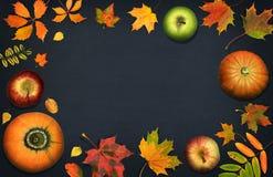 Vase mit trockenen Blättern, Apfel und Kerzen auf dem Rausschmiß Saisonobst und gemüse mit Fallblättern Herbsthintergrund mit Kür Lizenzfreie Stockfotografie