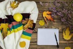 Vase mit trockenen Blättern, Apfel und Kerzen auf dem Rausschmiß Tasse Tee, Apfel, getrockneter Herbstlaub, beige Strickjacke auf lizenzfreie stockfotografie