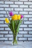 Vase mit Tulpen und Pussyweide Stockfotos