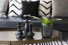 Vase moderne et feuille verte sur la table centrale avec les oreillers noirs et blancs sur le sofa Photographie stock libre de droits