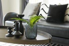 Vase moderne et feuille verte sur la table centrale avec les oreillers noirs et blancs sur le sofa Image stock