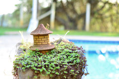 Vase of money and bunch in the pool. Money beautiful vase in bunch in the pool Stock Photo