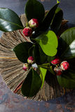 Vase from newspapers with camellia plant on a rusty table. Stock Photos