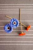 Vase orange à bleu de fleur Images stock