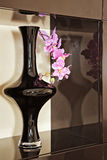 Vase with orchid flower in brown niche. Vase with pink orchid flower in brown niche royalty free stock photos