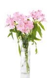 Vase of pink lilies Stock Photos