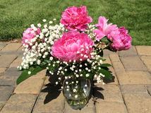 Vase of pink peonies Stock Photo