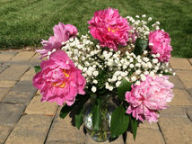 Vase of pink peonies on patio Stock Photography