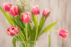 Vase of Pink Tulips and Babys Breath. On wood background Royalty Free Stock Photo