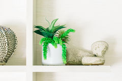 Vase Plant decoration in livingroom Royalty Free Stock Photos