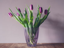 Vase with purple tulips Royalty Free Stock Photography