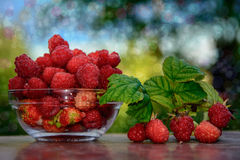 Vase with raspberries. Rustic raspberry.berries raspberries in a glass dish. Summer landscape of berries Stock Photo