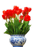 Vase with red Tulips. A Delft Blue vase with red tulips Royalty Free Stock Photos