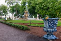 Vase with a rose in the park. SAINT PETERSBURG, RUSSIA - AUGUST 18, 2017: Summer garden. This park is one of the oldest in Saint Petersburg, it was designed by Stock Image