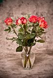 Vase of roses Stock Images