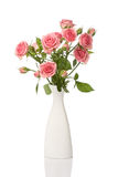 Vase with roses isolated on white Stock Photo