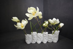 Vase schöne Magnolienblumen lokalisiert auf Schwarzem Lizenzfreies Stockfoto