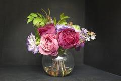 Vase schöne Tulpenblumen und -Schneeglöckchen lokalisiert auf Schwarzem Stockfoto