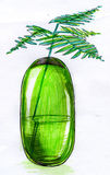 Vase sketch. Hand drawn sketch of a decorative plant in a green glass vase made with ink and markers Stock Photography