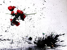 Vase Smash. Vase full of flowers and black ink caught as it smashes. Used as a fast shutter speed image Stock Photo