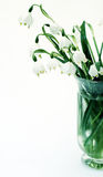 Vase with snowdrops Stock Images