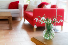 Vase with snowdrops on a table in the living room Stock Photos