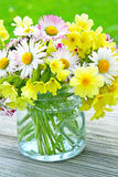 Vase of spring flowers  Stock Images