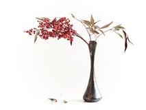 Vase still-life stock photos