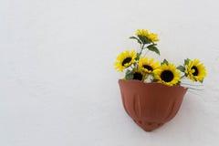 Vase with sunflowers stock photos