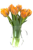 Vase of tulips royalty free stock images