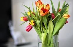 Vase with tulips Stock Photography