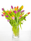 Vase of Tulips isolated Stock Photos