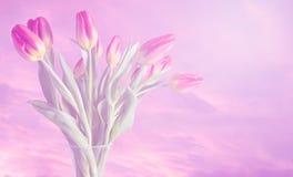 Vase Tulpen mit träumerischen Farben und weichem rosa Hintergrund Stockfoto