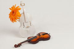 Vase violin and violin original Royalty Free Stock Image