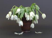 Vase voll von herabhängendem und von verwelkten Blumen Stockfotografie
