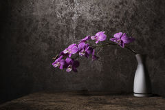 Vase of white flowers with purple orchids. Vase of white flowers with purple orchids placed on the old wooden floor royalty free stock photo