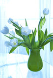 Vase of white tulips Royalty Free Stock Photo