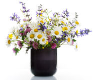 Vase with wildflowers Stock Photos