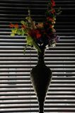 Vase in the window, cool dark interior Stock Image