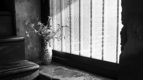 Vase and window. Flower vase by the window in vintage style Stock Photos