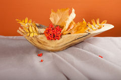 Vase from the wood with autumn leaves and bunches mountain ash Stock Photos
