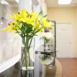 Vase of Yellow Lilies Stock Images
