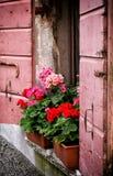 Vasen Blumen auf die Marmorplatte eines alten rosa Fensters Lizenzfreie Stockbilder