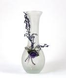 Vases à conception intérieure Photographie stock