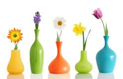 vases άνοιξη λουλουδιών Στοκ Εικόνες