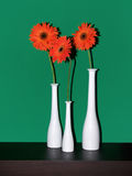 vases δέντρων στοκ φωτογραφία