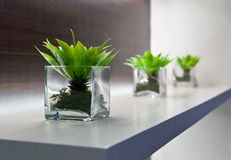 Vases Stock Images
